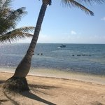 Photo of Belizean Shores Resort