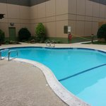 Foto di BEST WESTERN PLUS Dallas Hotel & Conference Center