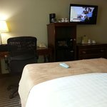 Photo de BEST WESTERN PLUS Dallas Hotel & Conference Center