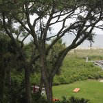 صورة فوتوغرافية لـ ‪The Island Club of Hilton Head Seawatch‬