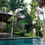 Photo de Villa Junjungan Resort Pool & Spa