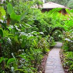 Path to our private rancho