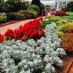 LOUIS GINTER GARDENS & FLOWERS