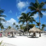 Marriott's Aruba Surf Club resmi
