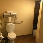 Φωτογραφία: Embassy Suites Santa Ana - Orange County Airport North