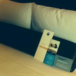 Foto Wyndham Grand Chicago Riverfront