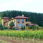 Φωτογραφία: Black Walnut Inn & Vineyard