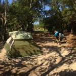 Foto van Frisco Woods Campground