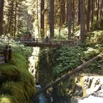 Foto van Sol Duc Hot Springs Resort