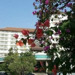 Photo de Jomtien Thani Hotel