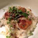 Scallop Dinner Three Day Scallops Pan Seared with Truffled Mashers & Mushroom Leek Blanquette,