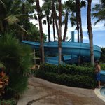 Photo de Hyatt Regency Coconut Point Resort & Spa