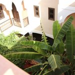 Photo of Riad l'Oiseau du Paradis