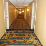 The corridor outside my room