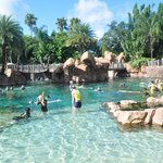 Photo of Discovery Cove