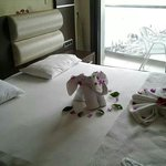 Always a nice surprise after the maid cleans your room:) Beautiful Immaculate rooms at malibu b