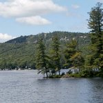 Lots of trees, beautiful homes, boats, and islands to see on the tour.