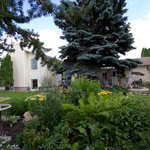 Bilde fra Glacier Park Bed and Breakfast