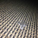 Candy wrapped found under bed too