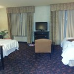 Foto van Hampton Inn & Suites Dallas-Arlington North