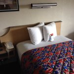 Φωτογραφία: Red Roof Inn Boston Framingham