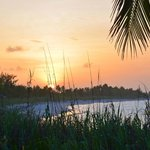 Pineapple Fields Beach - Sunset
