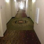 Photo de Hilton Garden Inn Cincinnati/Sharonville
