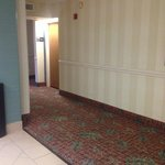Foto Hampton Inn Miami-Coconut Grove/Coral Gables