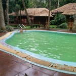 Foto di Thekkady - Woods n Spice, A Sterling Holidays Resort