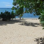 Foto de Cashew Grove Beach Resort