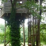 Treehouse from the entry side