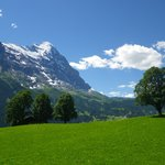 Foto de Grindelwald Youth Hostel