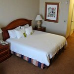 Photo de Hilton Garden Inn Oakland/San Leandro