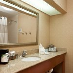 Hampton Inn Laredo Hotel Bathroom