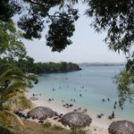 Sunset Cove Beach - There are palm umbrellas, and large shade trees right on the beach.