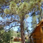 Foto de Horse Thief Campground