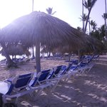 Occidental Grand Punta Cana resmi
