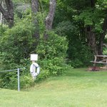 Tarry Ho Campground and Cottagesの写真