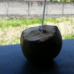 Delicious coconut water. So refreshing.