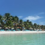 Foto van Mayan Princess Beach & Dive Resort
