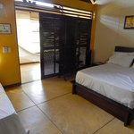 Foto The Amazon Bed & Breakfast