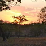 Billede af Mary River Wilderness Retreat & Caravan Park