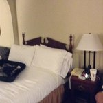 Φωτογραφία: Holiday Inn Peachtree City