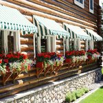 Charming flowers fill window boxes outside restaurant