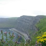 The walk to Cliffs of Moher