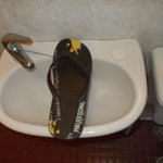 The unbelievable basin: this is my flip-flop and I'm not a giant. My UK size shoe is 11.