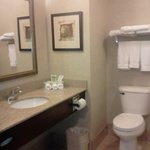 Foto de Holiday Inn Express Hotel & Suites Madison-Verona