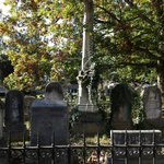 Variety of grave stone shapes and rod iron fence