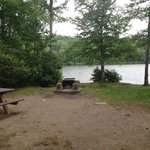 Φωτογραφία: Mongaup Pond Campground
