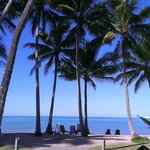Photo de Alamanda Palm Cove